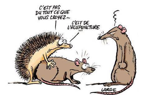 ob_6bd669_dessin-comique-acupuncture