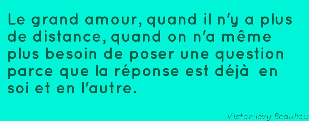 victor-levy-beaulieu.12815-meme-amour-grand-distance-autre-deja-besoin-parce-reponse-question-poser